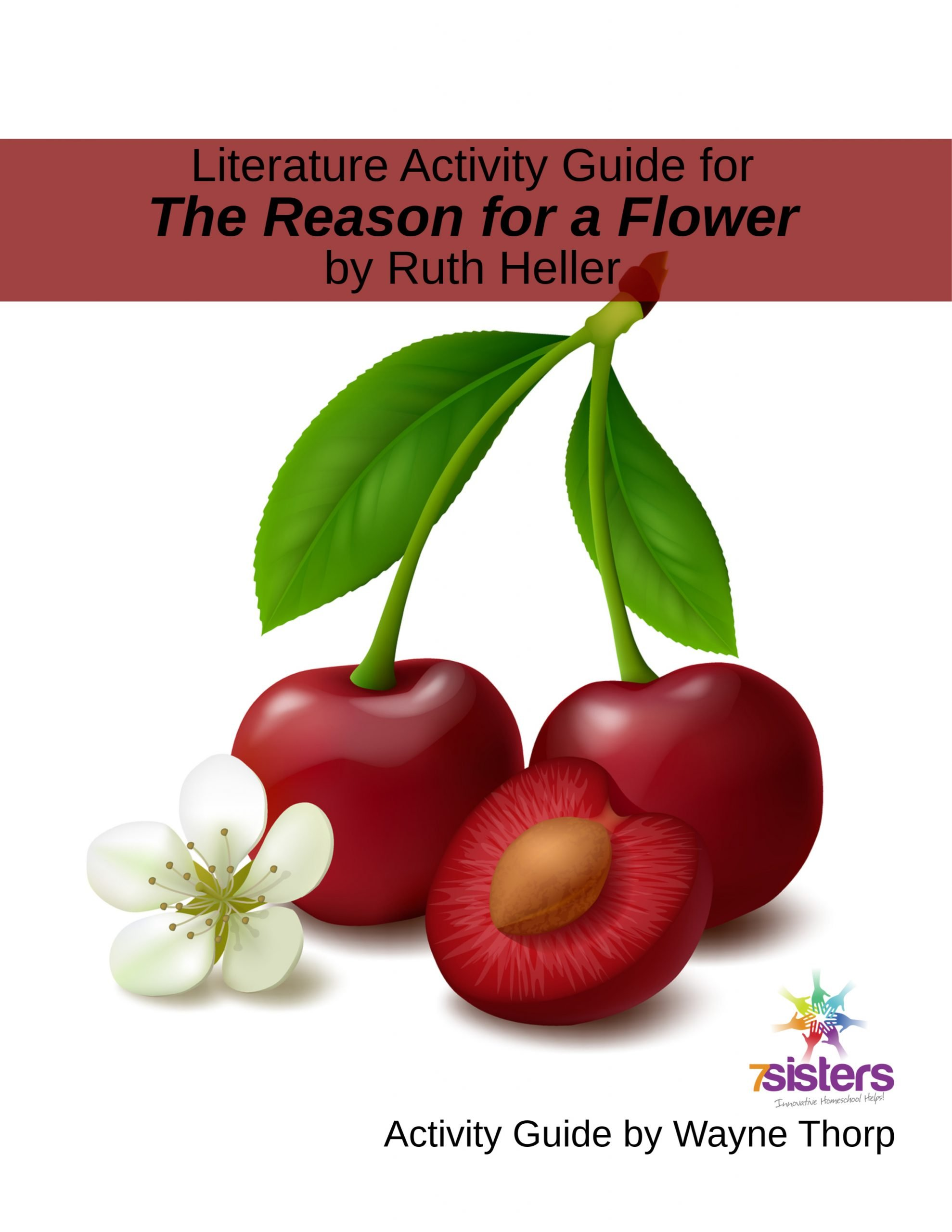 Literature Activity Guide for The Reason for a Flower